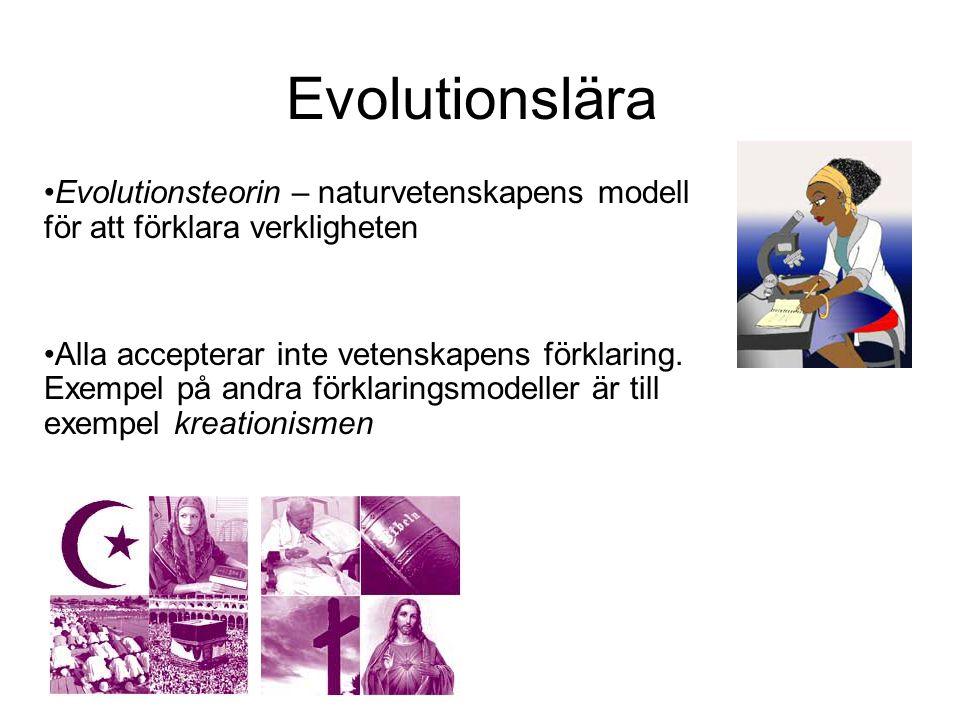 Evolutionslära Evolutionsteorin – naturvetenskapens modell för att förklara verkligheten Alla accepterar inte vetenskapens förklaring. Exempel på andr