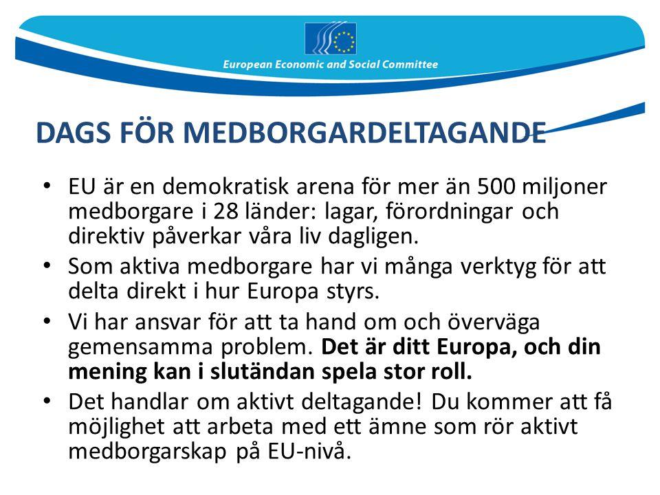 EU är en demokratisk arena för mer än 500 miljoner medborgare i 28 länder: lagar, förordningar och direktiv påverkar våra liv dagligen. Som aktiva med