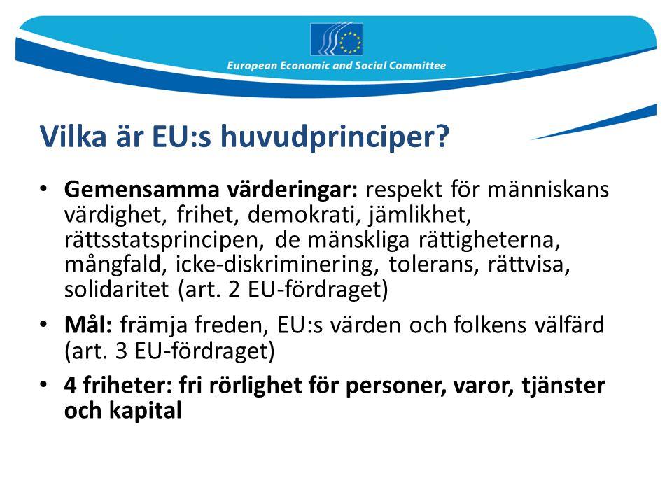 Vilka är EU:s huvudprinciper? Gemensamma värderingar: respekt för människans värdighet, frihet, demokrati, jämlikhet, rättsstatsprincipen, de mänsklig
