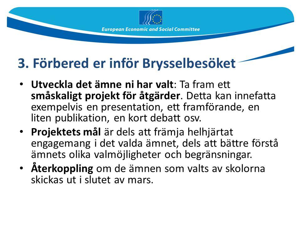 3. Förbered er inför Brysselbesöket Utveckla det ämne ni har valt: Ta fram ett småskaligt projekt för åtgärder. Detta kan innefatta exempelvis en pres