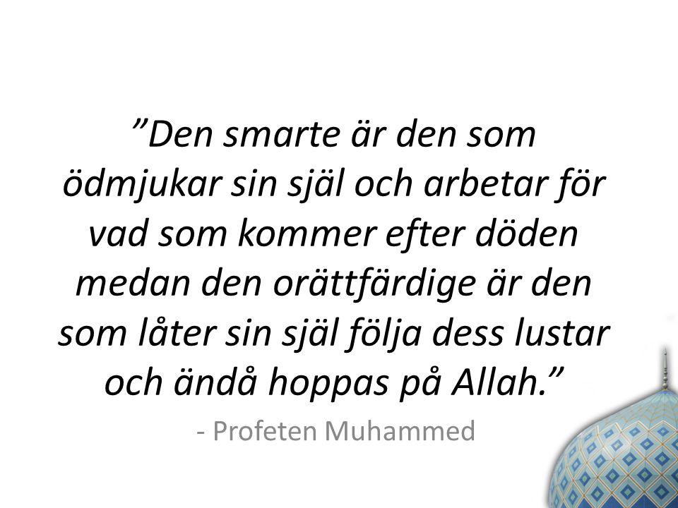 Den smarte är den som ödmjukar sin själ och arbetar för vad som kommer efter döden medan den orättfärdige är den som låter sin själ följa dess lustar och ändå hoppas på Allah. - Profeten Muhammed