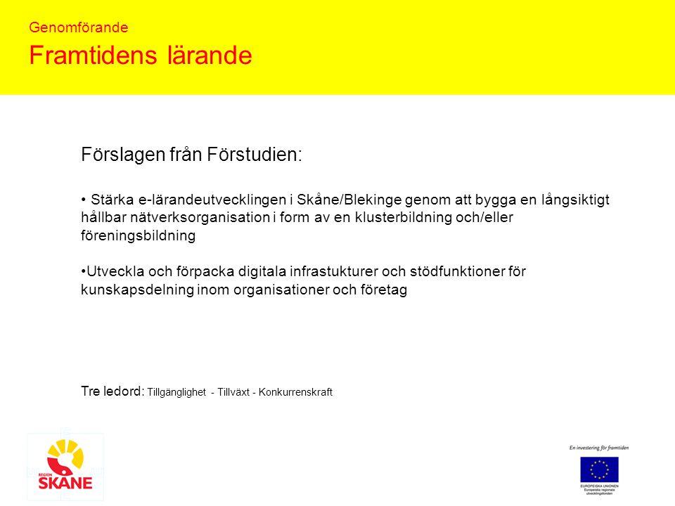 Genomförande Framtidens lärande Tre ledord: Tillgänglighet - Tillväxt - Konkurrenskraft Stärka e-lärandeutvecklingen i Skåne/Blekinge genom att bygga en långsiktigt hållbar nätverksorganisation i form av en klusterbildning och/eller föreningsbildning Utveckla och förpacka digitala infrastukturer och stödfunktioner för kunskapsdelning inom organisationer och företag Förslagen från Förstudien: