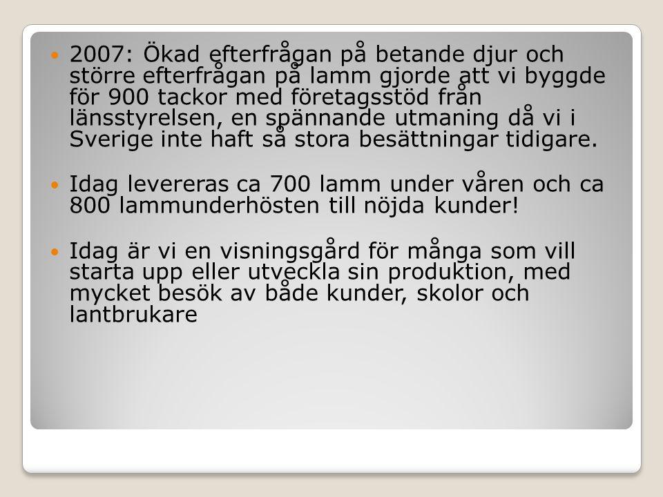 Svensklammproduktion har utvecklats mycket de senaste 15 åren, konsumtionen har fördubblats, produktionen ökar med ca 10% om året.