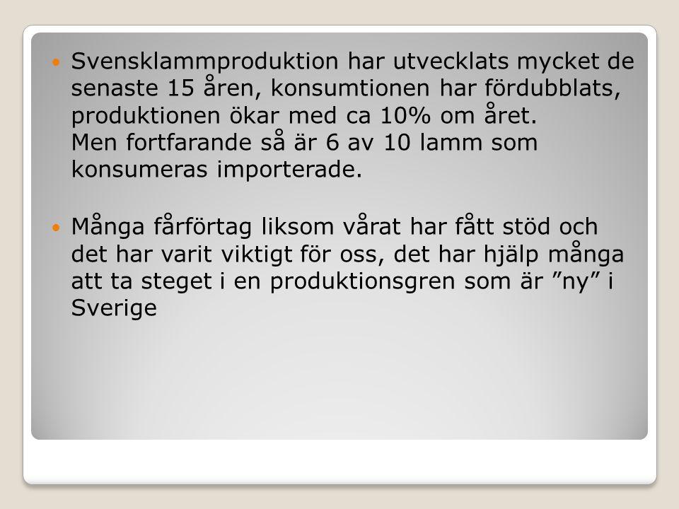 Framtiden Nya produkter Sänka kostnader Effektivare produktion med mindre miljöpåverkan!