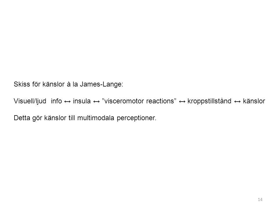 """Skiss för känslor à la James-Lange: Visuell/ljud info ↔ insula ↔ """"visceromotor reactions"""" ↔ kroppstillstånd ↔ känslor Detta gör känslor till multimoda"""