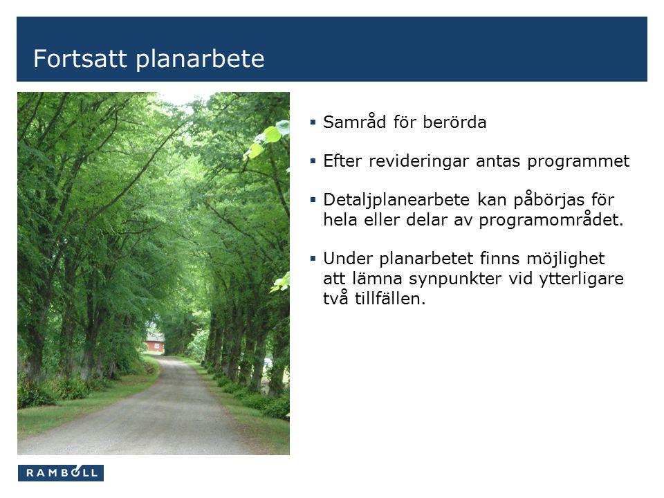 Fortsatt planarbete  Samråd för berörda  Efter revideringar antas programmet  Detaljplanearbete kan påbörjas för hela eller delar av programområdet.