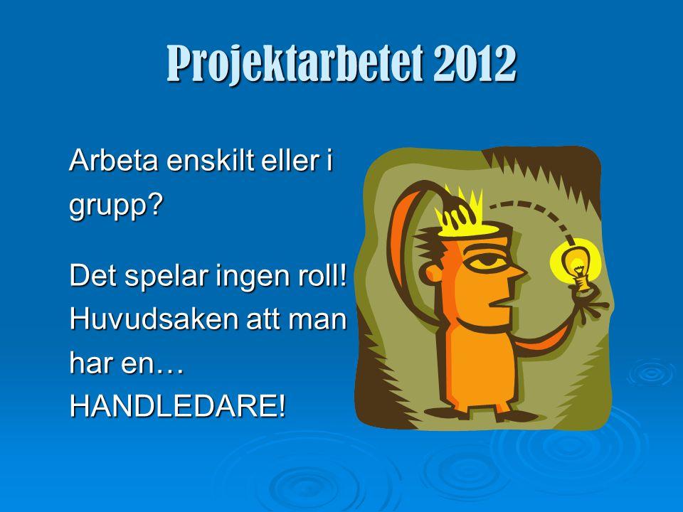 Projektarbetet 2012  VT-12 Gemensam start för skolans alla tvåor - inspiration och goda idéer.