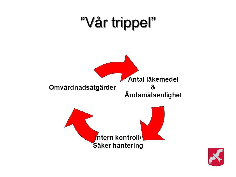 """Antal läkemedel & Ändamålsenlighet Intern kontroll/ Säker hantering Omvårdnadsåtgärder """"Vår trippel"""""""