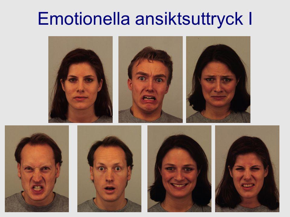 Emotionella ansiktsuttryck I