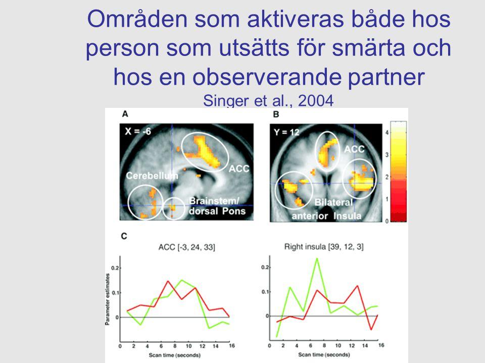 Områden som aktiveras både hos person som utsätts för smärta och hos en observerande partner Singer et al., 2004