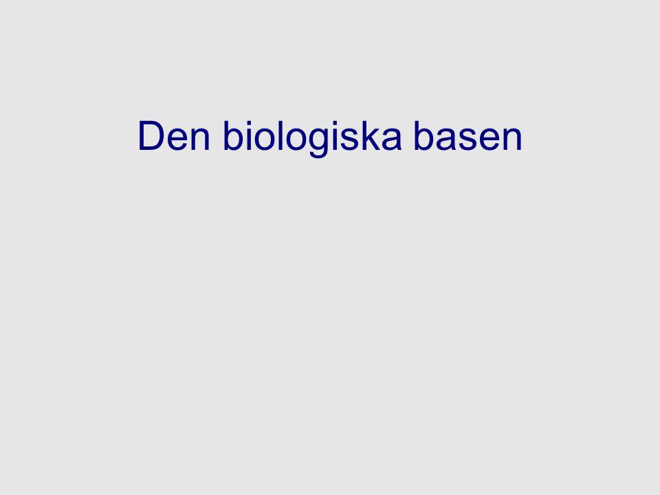 Den biologiska basen