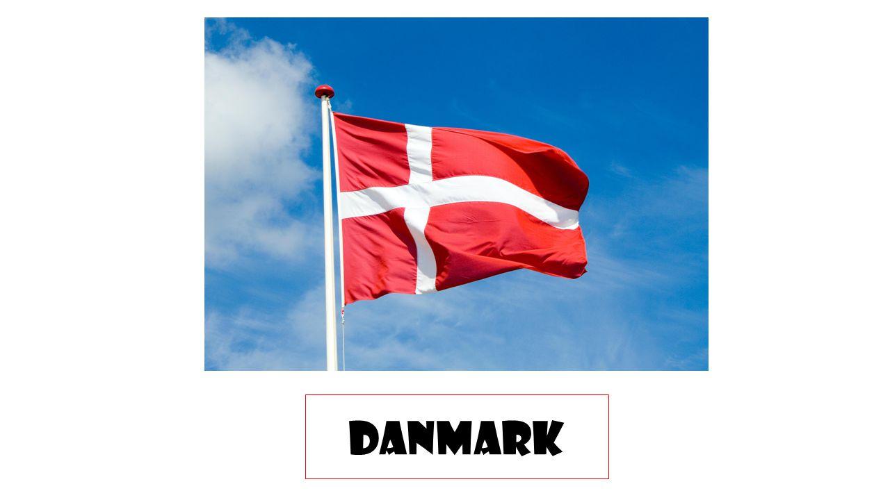 Danskan har utvecklats från det gemensamma nordiska språket (fornnordiska, fornöstnordiska), Som talades fram till vikingatiden i nuvarande Danmark, Sverige och Norge.