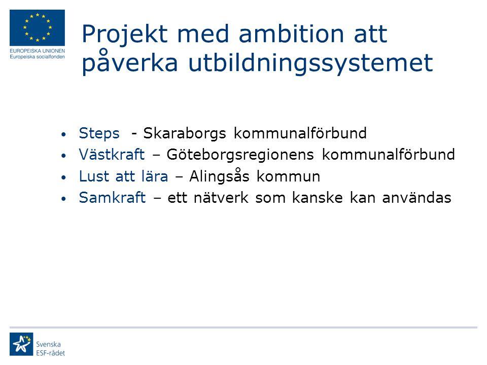 Projekt med ambition att påverka utbildningssystemet Steps - Skaraborgs kommunalförbund Västkraft – Göteborgsregionens kommunalförbund Lust att lära – Alingsås kommun Samkraft – ett nätverk som kanske kan användas