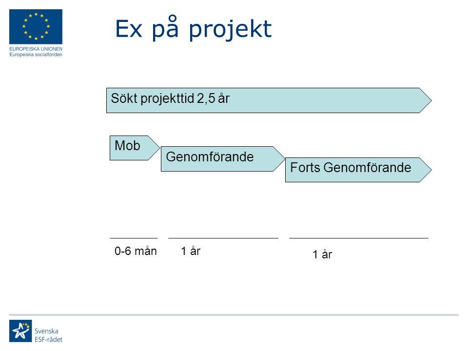 Ex på projekt Sökt projekttid 2,5 år Mob Genomförande Forts Genomförande 0-6 mån1 år
