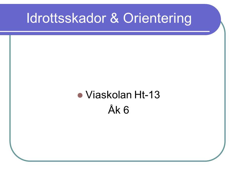 Idrottsskador & Orientering Viaskolan Ht-13 Åk 6