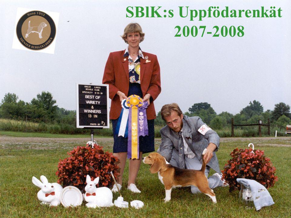 De vanligaste ändringsförslagen Ffa att återinföra ett separat UCh som tidigare (samt i Norge och i Finland) Djurslagschampionat Rå, Räv, Hare Slopa ordinarieprovet Inför Viltspårprovs- championat