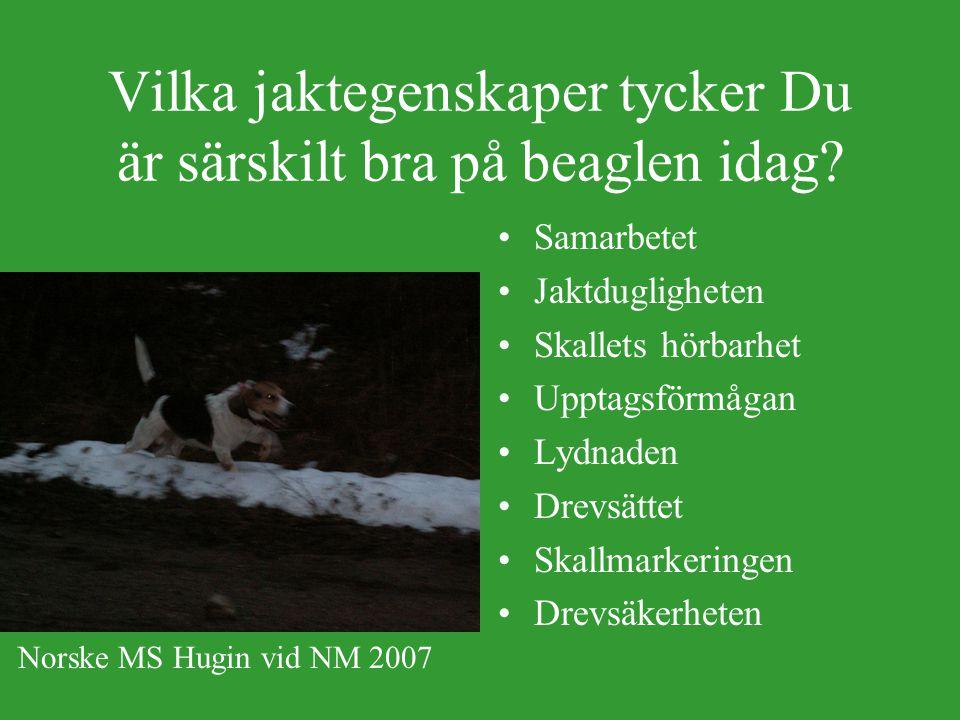 Intresseinriktning bland uppfödarna och antal kullar DjurslagHareAllroundHare + Räv Hare + Rå Antal uppfödare 323191 Antal Kullar 2285504711 Medeltal kullar/uppf.
