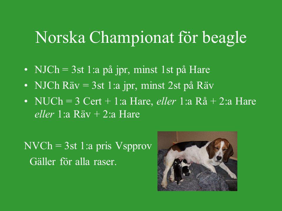 Svenska championat för beagle SEJCh = 3 st 1:a pris på jpr, varav minst 2 st på Hare.