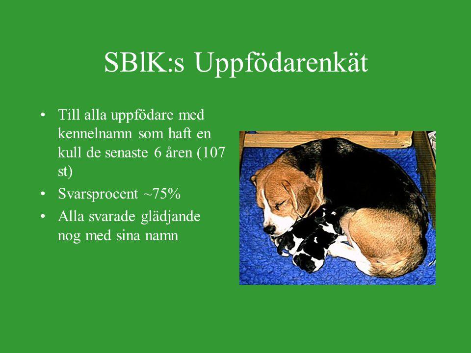 SBlK:s Uppfödarenkät Till alla uppfödare med kennelnamn som haft en kull de senaste 6 åren (107 st) Svarsprocent ~75% Alla svarade glädjande nog med sina namn