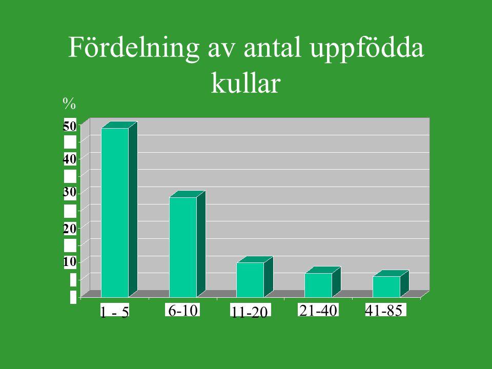 Fördelning av antal uppfödda kullar 1 - 5 6-10 11-20 21-4041-85 40 30 20 10 50 %