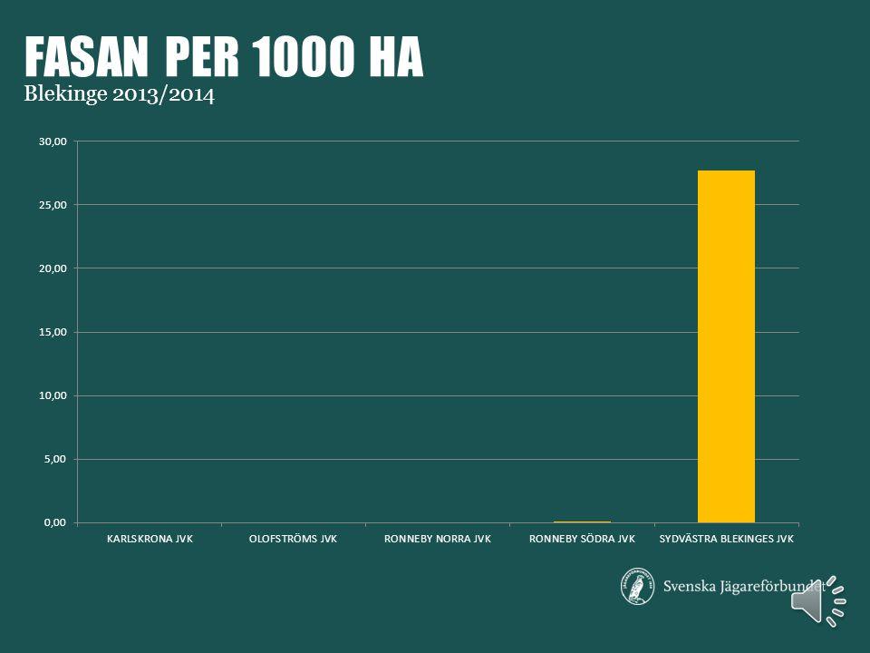 MÅSFÅGLAR PER 1000 HA Blekinge 2013/2014
