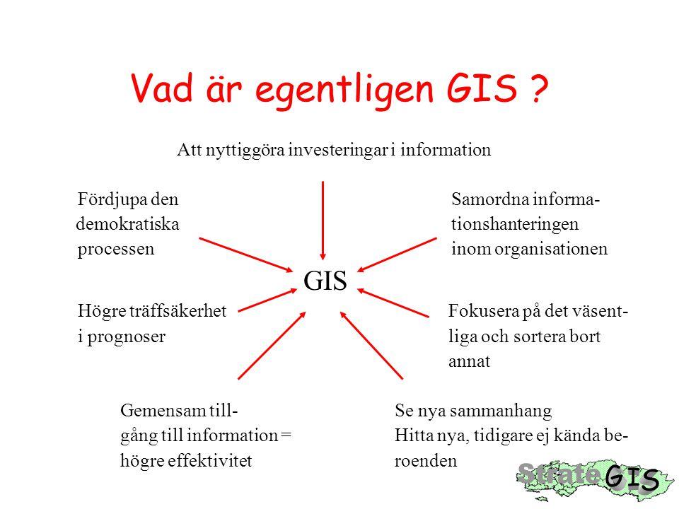 Vad är egentligen GIS ? Att nyttiggöra investeringar i information Fördjupa den Samordna informa- demokratiska tionshanteringen processen inom organis