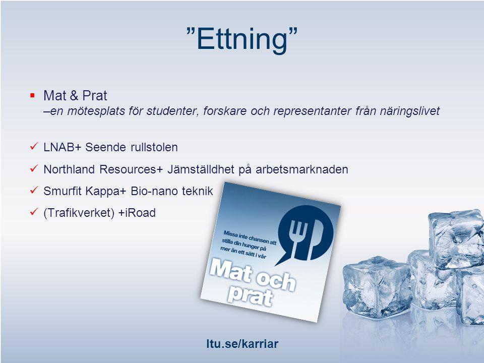 ltu.se/karriar  Alumner berättar Vette-katten –utexaminerade studenter berättar om sin resa efter LTU Maskinteknik, Datateknik, Arbetsterapeuter, Rymdteknik mfl.