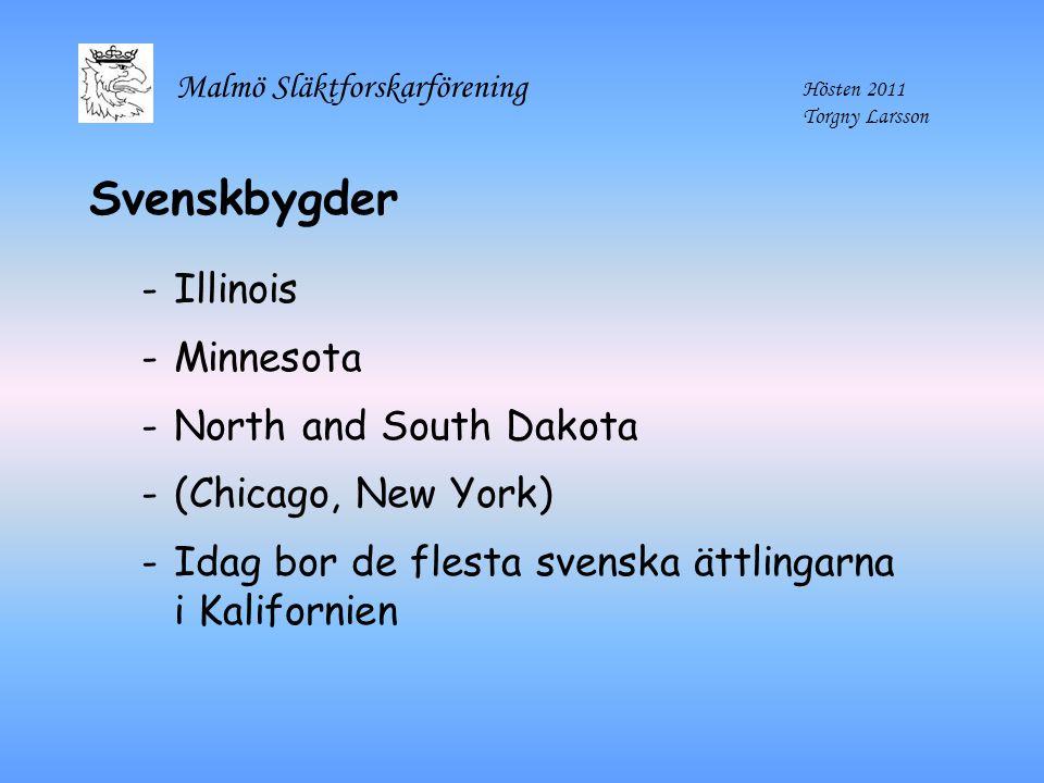 Malmö Släktforskarförening Hösten 2011 Torgny Larsson Svenskbygder -Illinois -Minnesota -North and South Dakota -(Chicago, New York) -Idag bor de fles