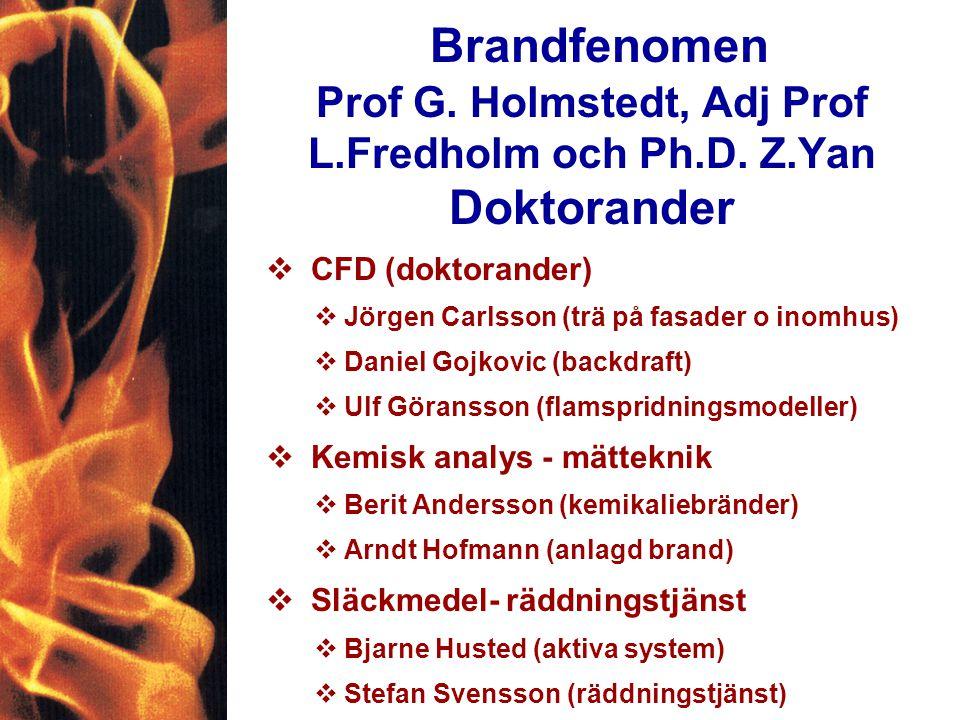 Brandfenomen Prof G. Holmstedt, Adj Prof L.Fredholm och Ph.D.