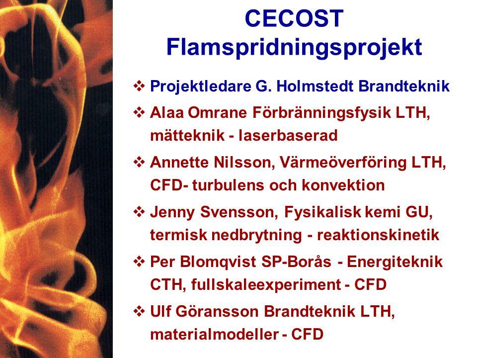 CECOST Flamspridningsprojekt vProjektledare G.