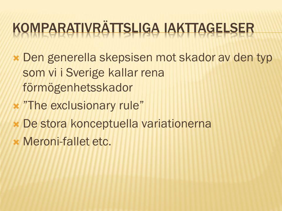 """ Den generella skepsisen mot skador av den typ som vi i Sverige kallar rena förmögenhetsskador  """"The exclusionary rule""""  De stora konceptuella vari"""