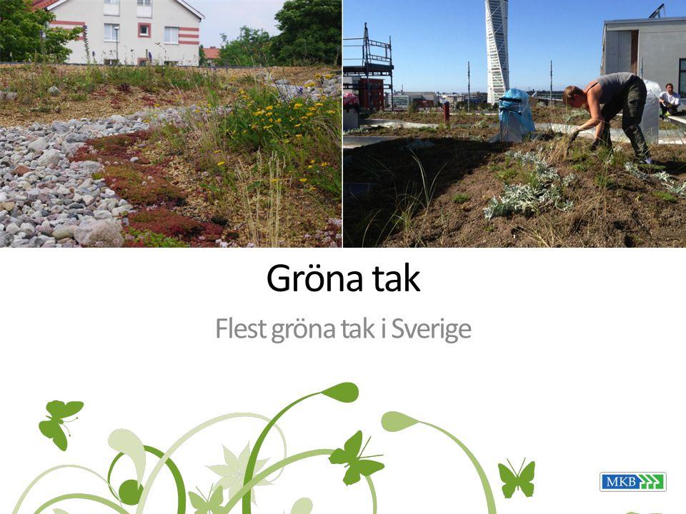 Gröna tak Flest gröna tak i Sverige