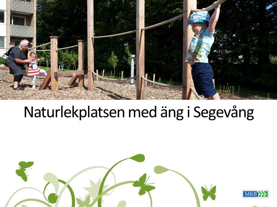 Naturlekplatsen med äng i Segevång