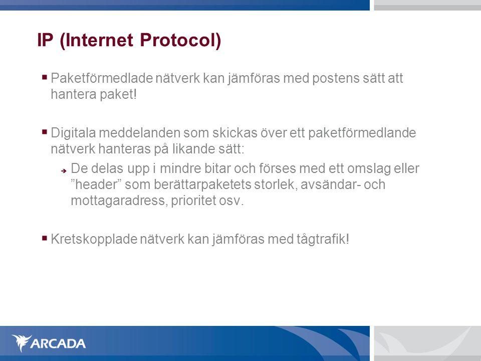 IP (Internet Protocol)  IP är det viktigaste protokollet på Näterksskiktet  Har som uppgift att förmedla ett datapeket från en källvärd (source host) till destinationsvärden (destination host) på basen av dess adress.
