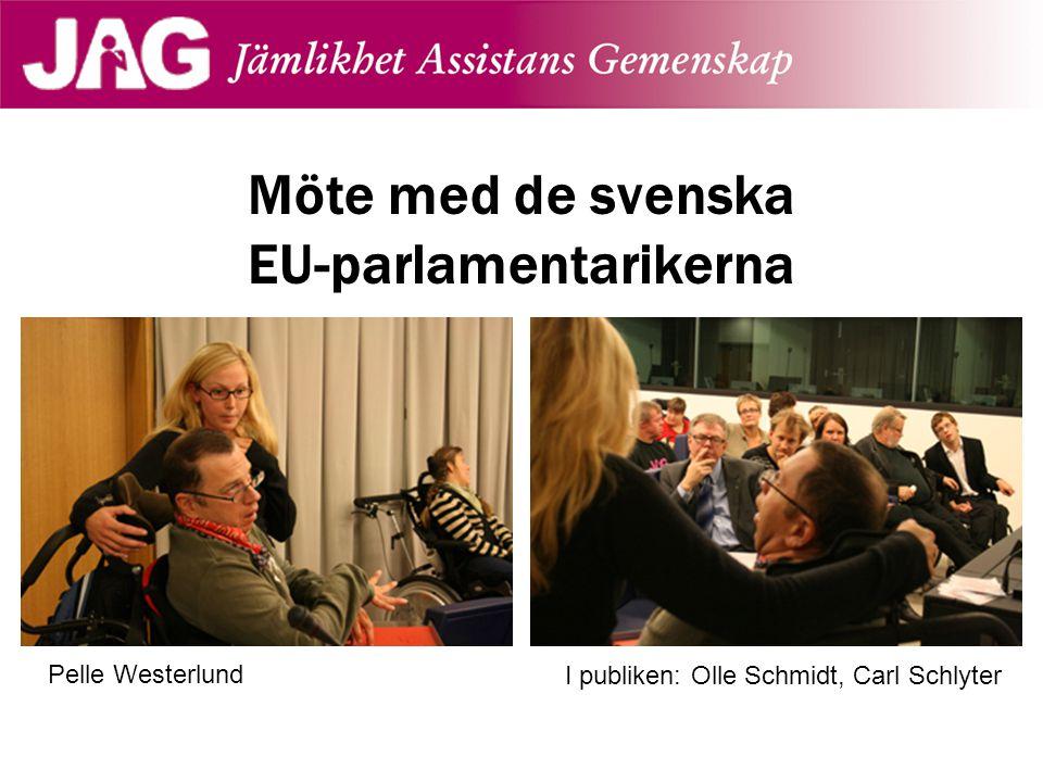 Möte med de svenska EU-parlamentarikerna Pelle Westerlund I publiken: Olle Schmidt, Carl Schlyter
