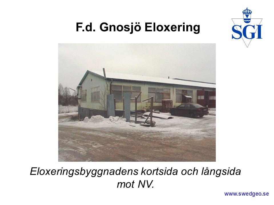 www.swedgeo.se Trägolvet underifrån med kraftig missfärgning samt saltutfällningar.
