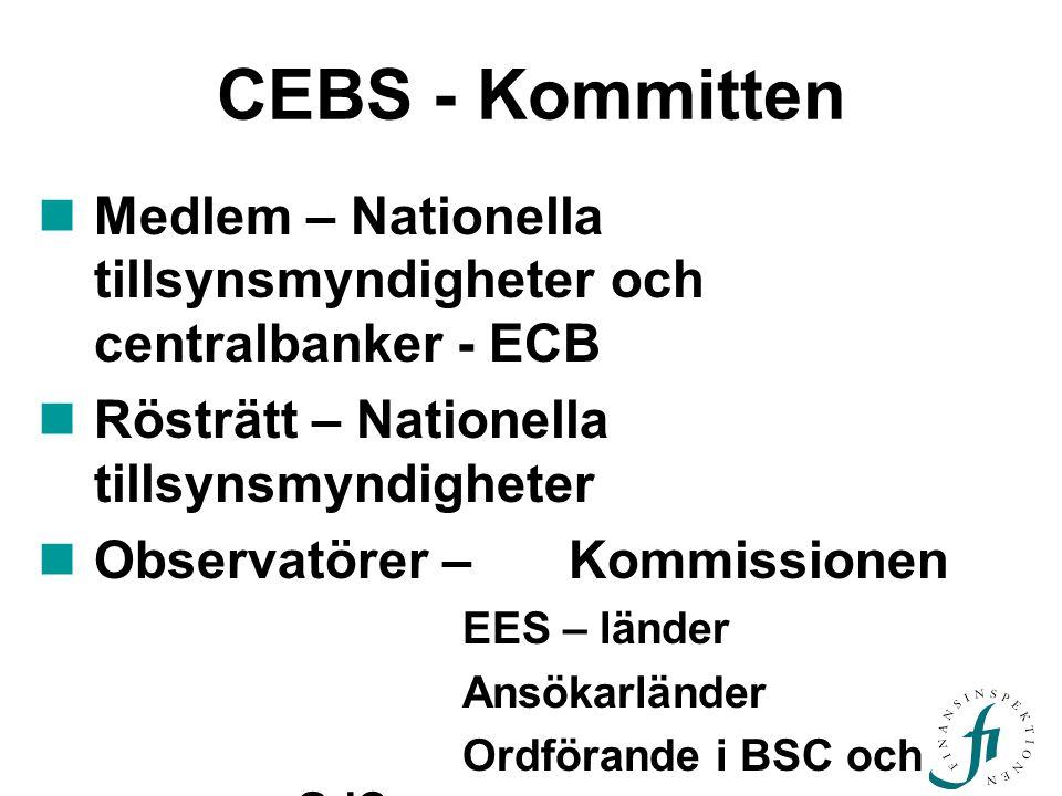CEBS - Kommitten Medlem – Nationella tillsynsmyndigheter och centralbanker - ECB Rösträtt – Nationella tillsynsmyndigheter Observatörer – Kommissionen EES – länder Ansökarländer Ordförande i BSC och GdC