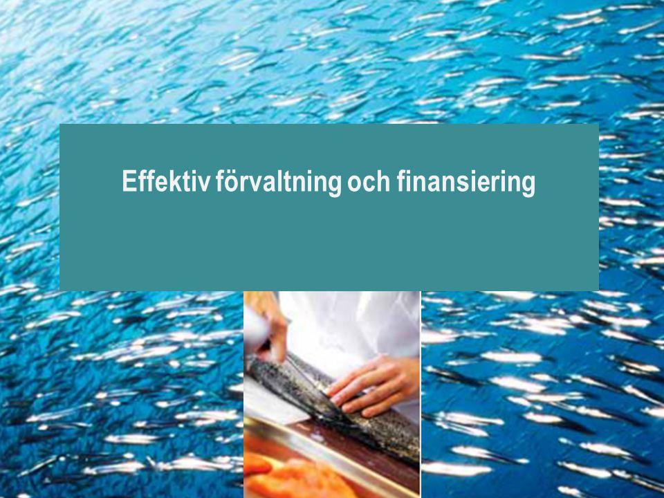 Effektiv förvaltning och finansiering