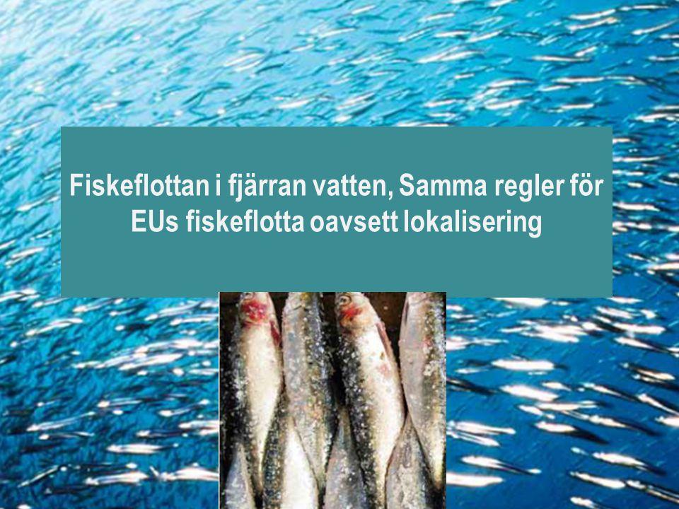 Fiskeflottan i fjärran vatten, Samma regler för EUs fiskeflotta oavsett lokalisering