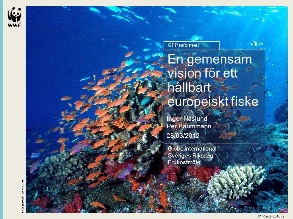 © Cat Holloway / WWF-Canon 31 March 2015 - 2 Globe international Sveriges Riksdag Frukostmöte En gemensam vision för ett hållbart europeiskt fiske Inger Näslund Per Baummann 28/03/2012 CFP reformen