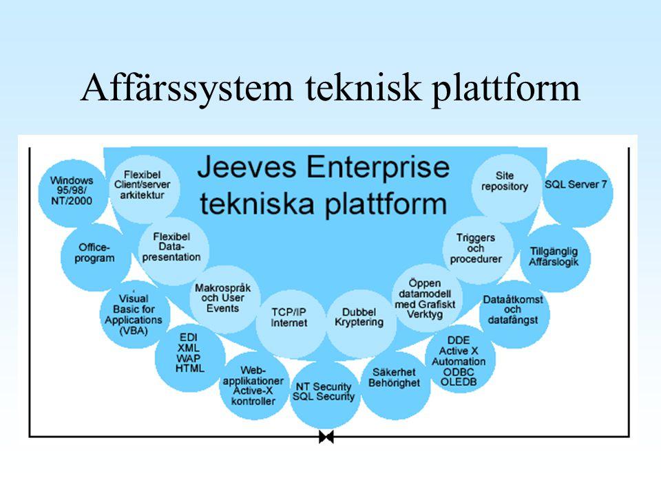 Affärssystem teknisk plattform