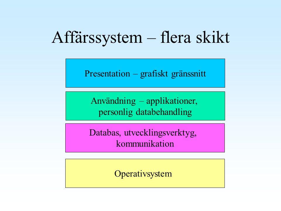 Affärssystem – flera skikt Operativsystem Databas, utvecklingsverktyg, kommunikation Presentation – grafiskt gränssnitt Användning – applikationer, pe