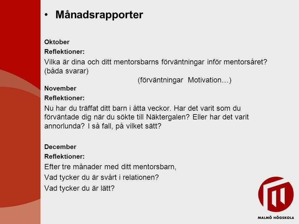 Månadsrapporter Oktober Reflektioner: Vilka är dina och ditt mentorsbarns förväntningar inför mentorsåret? (båda svarar) (förväntningar Motivation…) N