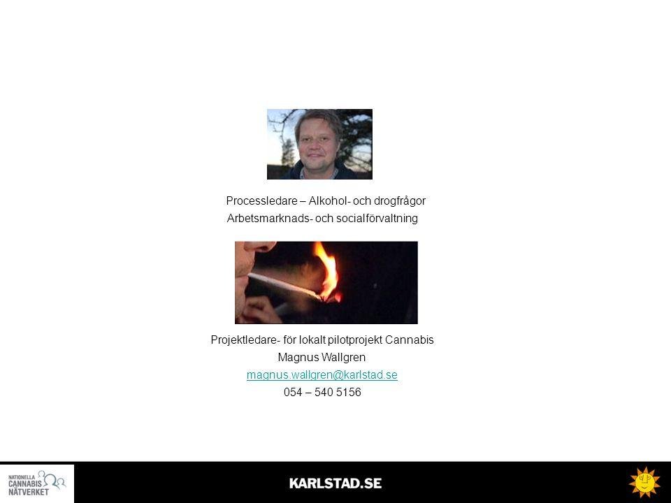 Processledare – Alkohol- och drogfrågor Arbetsmarknads- och socialförvaltning Projektledare- för lokalt pilotprojekt Cannabis Magnus Wallgren magnus.wallgren@karlstad.se 054 – 540 5156