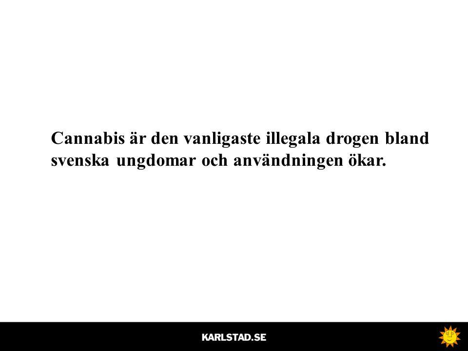 Cannabis är den vanligaste illegala drogen bland svenska ungdomar och användningen ökar.