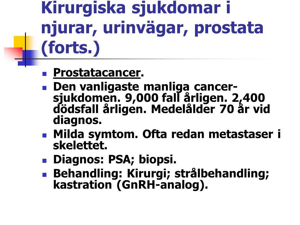 Kirurgiska sjukdomar i njurar, urinvägar, prostata (forts.) Prostatacancer. Den vanligaste manliga cancer- sjukdomen. 9,000 fall årligen. 2,400 dödsfa