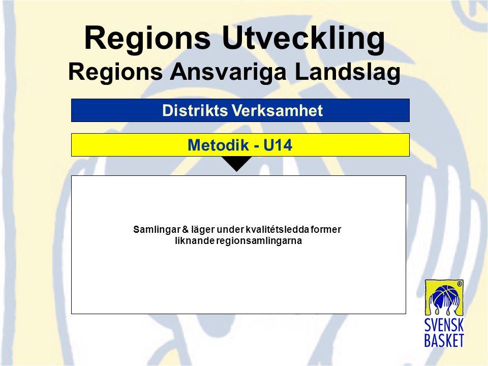 Distrikts Verksamhet Samlingar & läger under kvalitétsledda former liknande regionsamlingarna Regions Utveckling Regions Ansvariga Landslag Metodik -