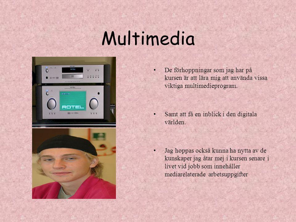 Multimedia De förhoppningar som jag har på kursen är att lära mig att använda vissa viktiga multimedieprogram. Samt att få en inblick i den digitala v