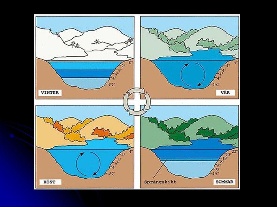Strålning Värme energin kan omvandlas till strålning.