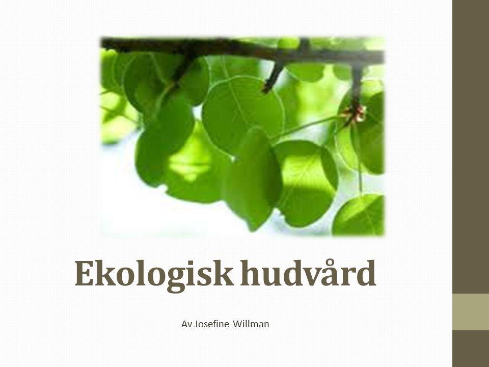 Ekologisk hudvård Av Josefine Willman